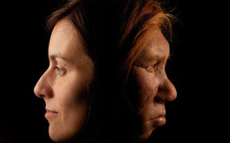 """Nghiên cứu DNA chỉ ra rằng, chỉ ít hơn 2% trong gen con người thực sự là """"con người"""""""