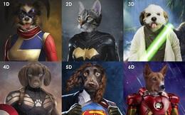 """Quiz Marvel: Bạn có đoán được hết tên của các """"siêu động vật"""" trong vũ trụ Marvel không? Khó lắm đó nha!"""
