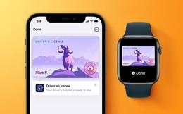 Những tính năng được quảng cáo nhưng chưa có trên iOS 15