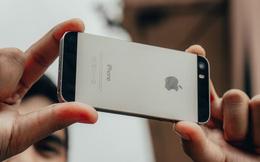 iPhone 5s với tuổi đời 8 năm lại vừa nhận được bản cập nhật iOS mới