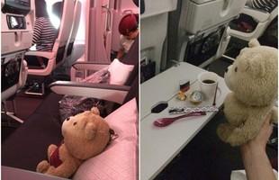 Choáng với thanh niên Nhật nuôi gấu Ted ngoài đời thực