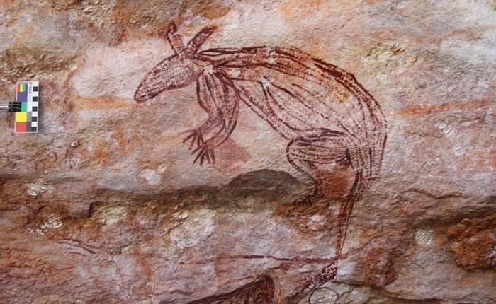 Những bức vẽ khổng lồ trên đá tiết lộ cuộc sống của thổ dân Australia gần 10.000 năm trước
