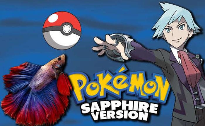 4 chú cá cảnh phá đảo Pokémon sau gần 3.200 giờ chơi, phát hiện cả bug game mà chưa ai tìm ra trong suốt 18 năm qua