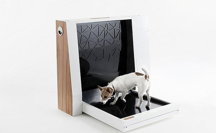 Nhà vệ sinh thông minh trong nhà cho chó này là ước mơ của mọi người nuôi chó