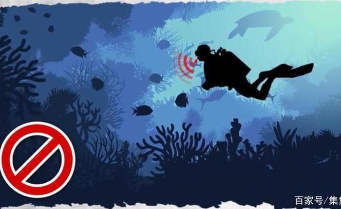 Huýt sáo dưới nước là phạm pháp, cắn chó lại hợp pháp và loạt quy định kỳ quặc chỉ có ở Mỹ
