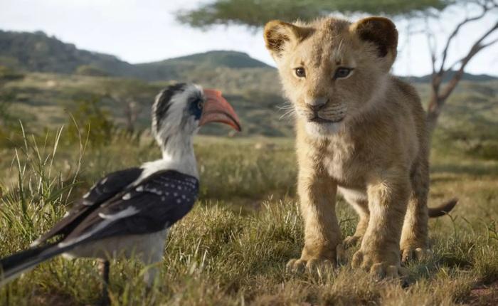 CEO Disney xin lỗi sau vụ việc một trường tiểu học bị phạt vì chiếu Lion King