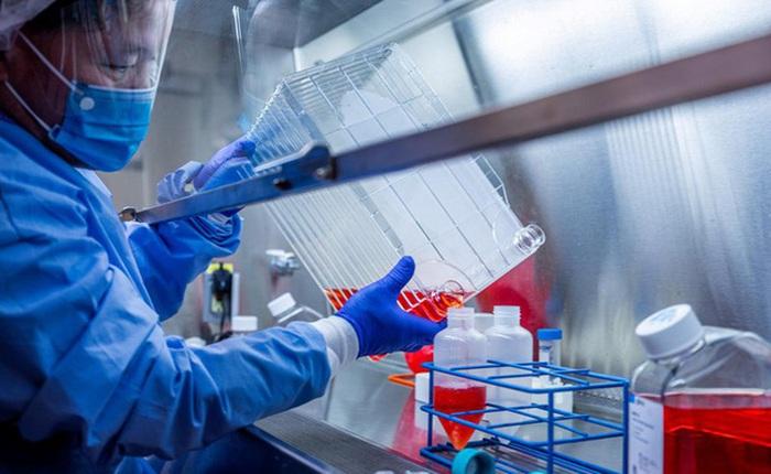 Phát hiện mới về loại vaccine lâu đời có thể giúp chống SARS-CoV-2