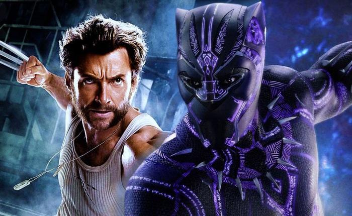 Điều gì đã khiến cho Wolverine và Black Panther ghét nhau như chó với mèo?