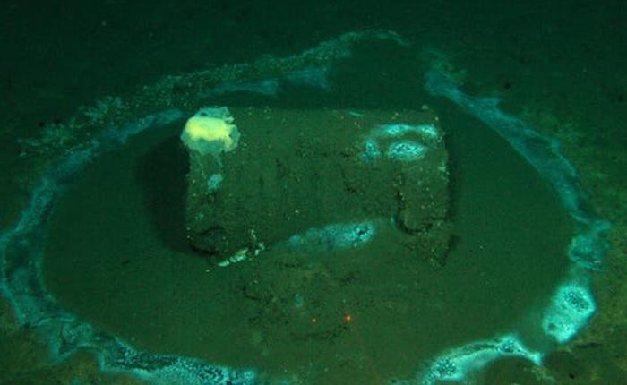 25.000 thùng nghi ngờ chứa thuốc trừ sâu vừa được phát hiện ngoài khơi bờ biển California
