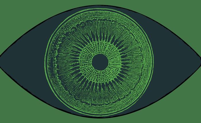 Đột phá: nhờ cấy gen tảo vào mắt, một người khiếm thị lấy lại được một phần nhỏ thị lực
