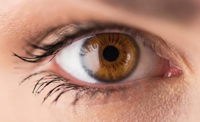 """Võng mạc: Chiếc """"cảm biến máy ảnh"""" trong mắt bạn hoạt động như thế nào?"""