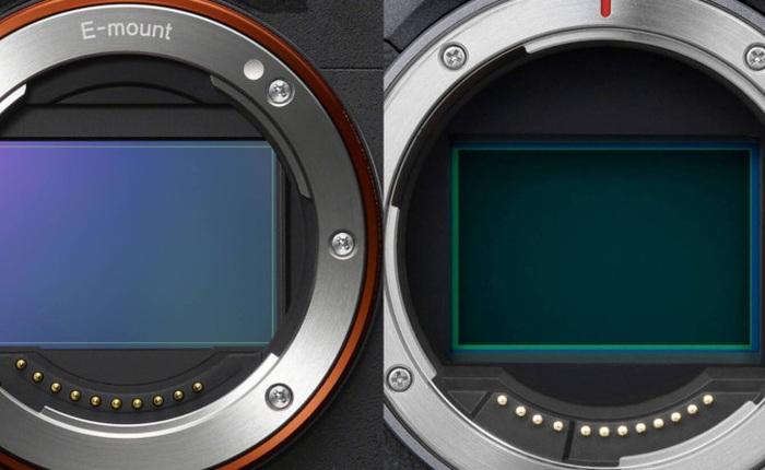 """Canon R5 """"đả bại"""" Sony Alpha 1 trong bài thử về khả năng chống rung IBIS"""
