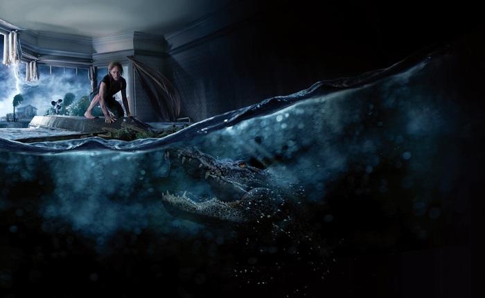 Mỹ: Tìm thấy cơ thể người trong bụng cá sấu, được cho là của cụ ông mất tích