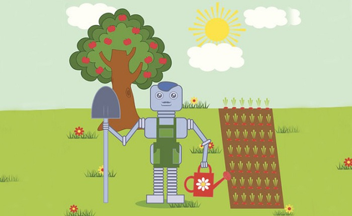 Nhật đang xây dựng trang trại rau với 90% nhân công là... robot