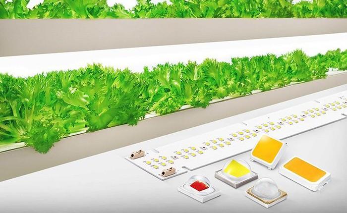 Samsung giới thiệu giải pháp đèn LED chiếu sáng mới dùng cho nông nghiệp sạch