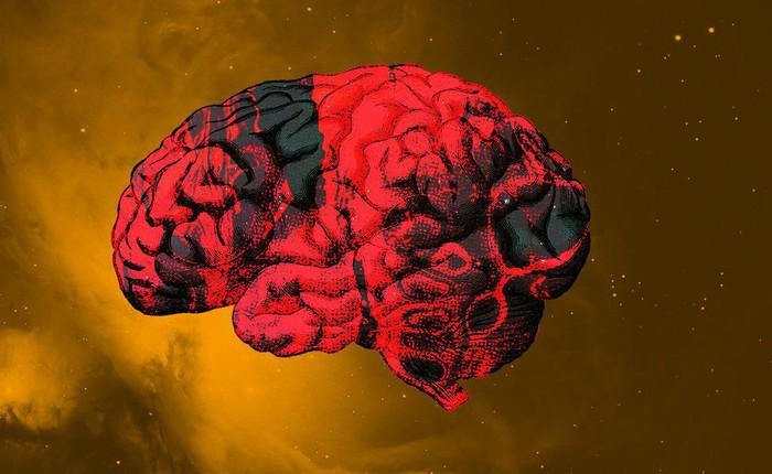 Điều gì sẽ xảy ra với bộ não phi hành gia khi họ tới Sao Hỏa?