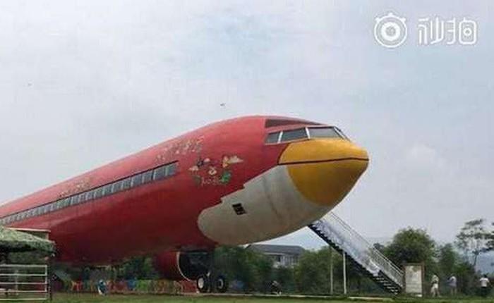 Đại gia Trung Quốc chi 1,5 triệu USD để sơn máy bay hình Angry Bird và mở nhà hàng, bảo tàng bên trong