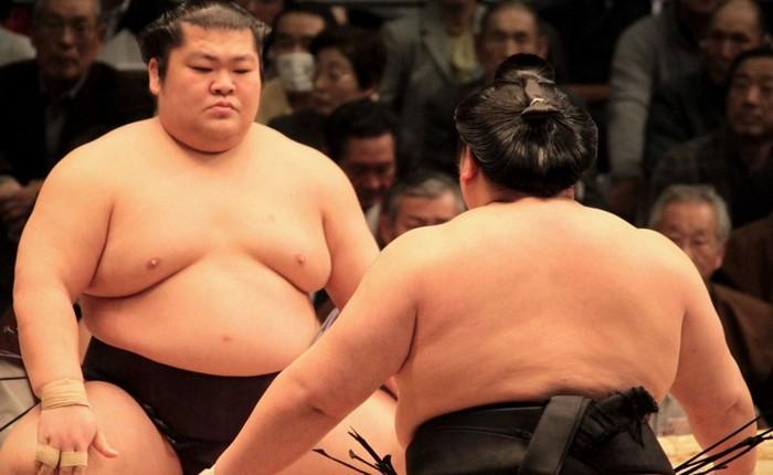 [Vietsub] Ăn tới 7.000 kcal/ngày, tại sao đô vật sumo không mắc bệnh như người béo phì?