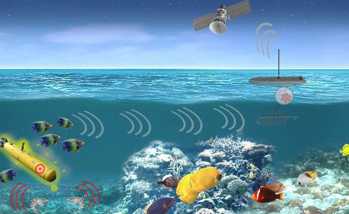 DARPA muốn biến hệ sinh thái biển thành cả một mạng lưới phát hiện tàu ngầm khổng lồ