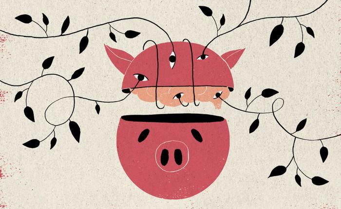 Các nhà khoa học Mỹ tuyên bố hồi sinh được não lợn đã chết sau 4 tiếng, đột phá này có ý nghĩa thế nào?