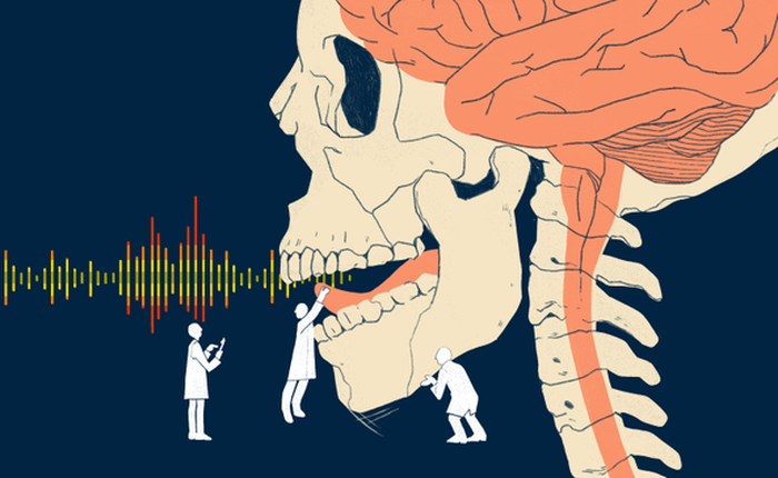 Các nhà khoa học đã có thể mô phỏng giọng nói bằng tín hiệu não