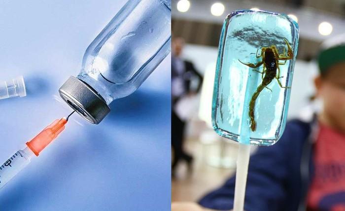 Từ vaccine đến kẹo bọ cạp, đây là 6 thứ cực dị có thể mua tại sân bay Mỹ