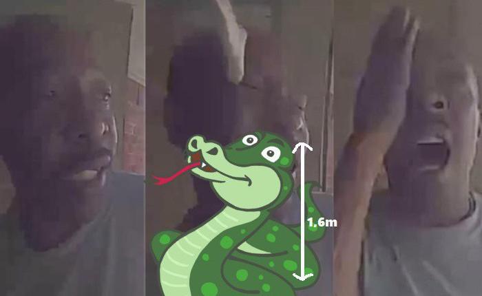 Đến chơi nhà bạn, anh người Mỹ bị con rắn dài mét sáu cắn vào đầu nhưng may là không sao