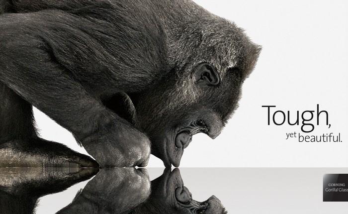 Ngược dòng thời gian: Corning từ trên bờ vực phá sản đến sự trỗi dậy và thống trị nhờ kính Gorilla Glass