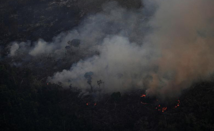 Hàng loạt sao cầu nguyện cho rừng Amazon, nhưng lại share nhầm ảnh đám cháy ở chỗ khác, kể cả Ronaldo, Djokovic hay Madonna