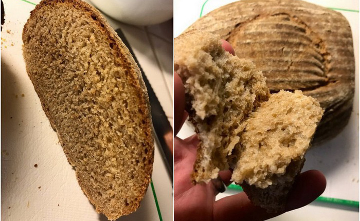 Tìm được loại men ủ hơn 4500 năm, nhà khoa học thử chế biến và thành công với món bánh mì nướng thơm ngon lạ lùng