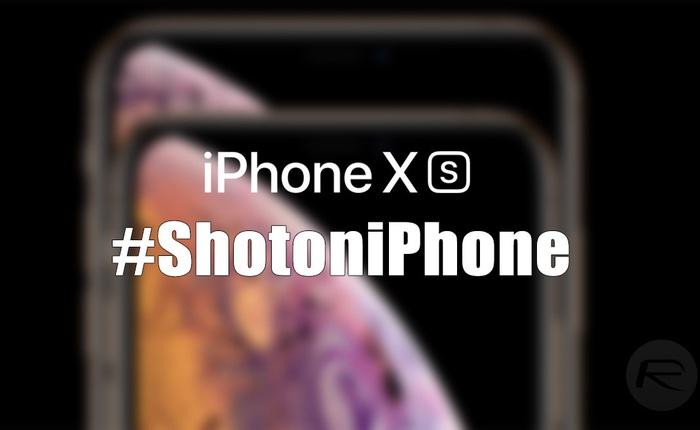 """Chiến dịch """"Shot on iPhone"""" của Apple đỉnh là thế mà vào tay các thánh TikTok là biến thành trò cười như này đây"""