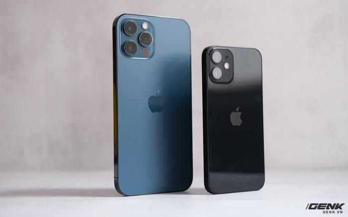 Bình chọn ảnh chụp từ iPhone 12 mini và iPhone 12 Pro Max: Bạn có nhận ra sự khác biệt của cả hai?