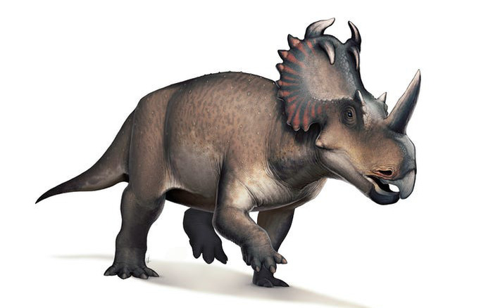 Lần đầu tiên các nhà khoa học phát hiện một con khủng long bị ung thư - xs thứ hai