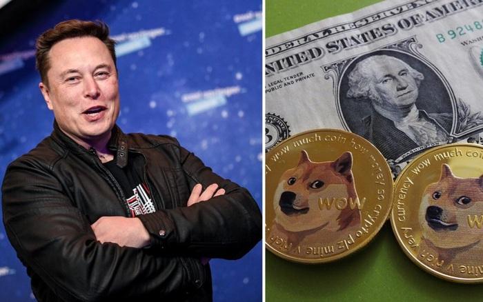 Suy tính đỉnh cao như Elon Musk: 'Đi đêm' với cha đẻ Dogecoin ngay từ 2019, đợi 2 năm sau mới bắt đầu bơm thổi giá