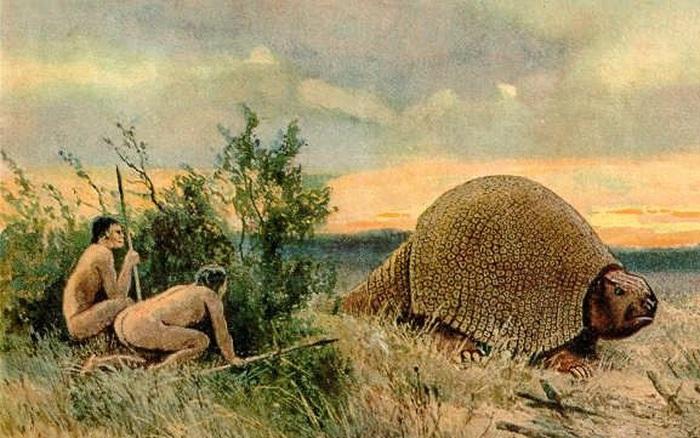 Glyptodon: Lâu đài di động ở Nam Mỹ