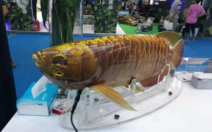 Quân đội Trung Quốc trình diễn robot thăm dò dưới nước ngụy trang hình cá rồng