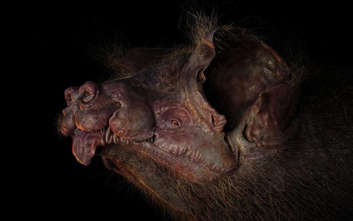 10 triệu năm nữa các loài động vật sẽ như thế nào?